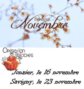 Vente de Brioche à Jonzier-Epagny